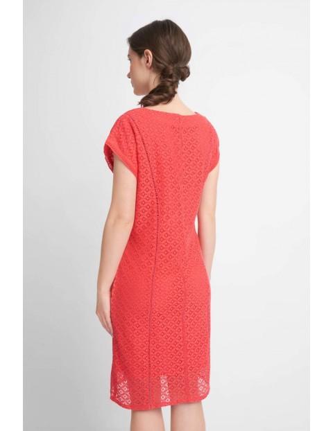 Malinowa koronkowa sukienka damska przed kolano