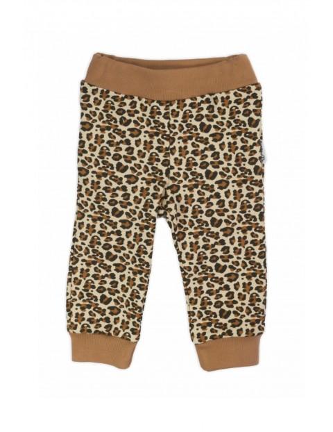 Spodnie dresowe bawełniane dla dziewczynki - Panterka