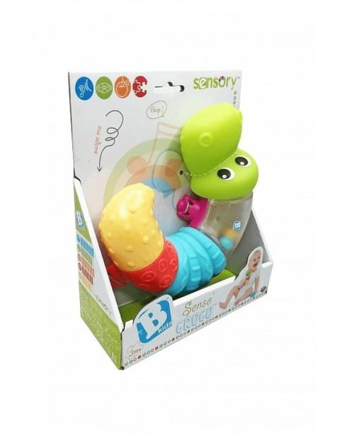 Sensoryczny krokodyl- zabawka dla dziecka B-kids