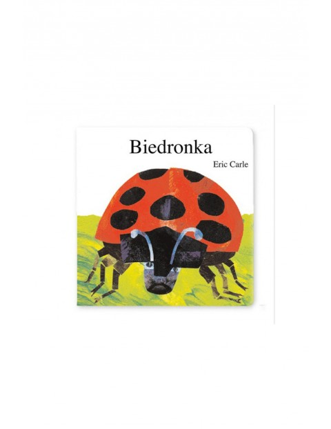 """Książka dla dzieci """"Biedronka"""""""