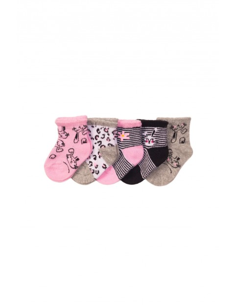 5 pak skarpetki niemowlęce dla dziewczynki