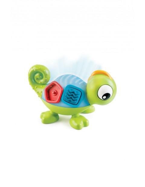 Kameleon Leon- sorter
