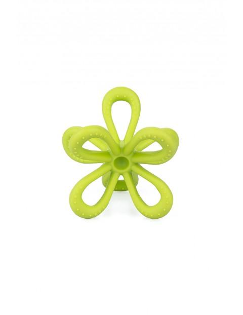 Gryzak uspokajający kwiatek GiliGums - limonkowy - 3msc +