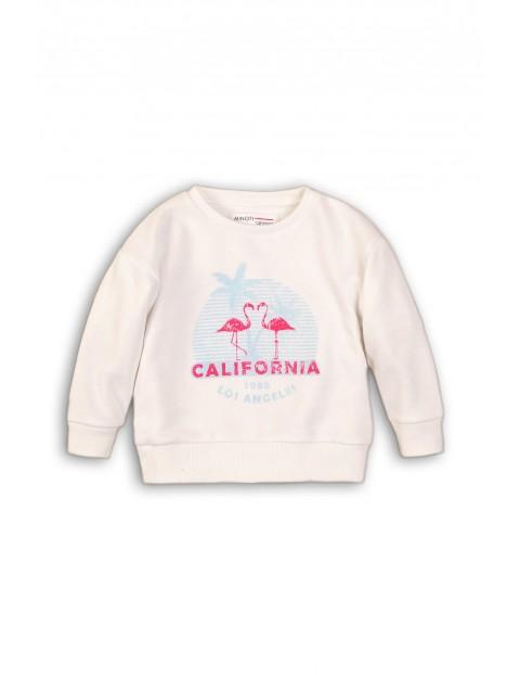 Bluza dresowa niemowleca z flamingami
