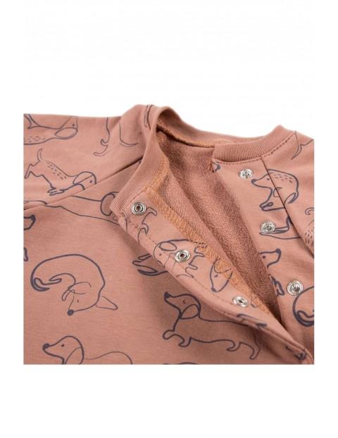 Bluza dzianinowa LAZY DAYS brązowa w pieski
