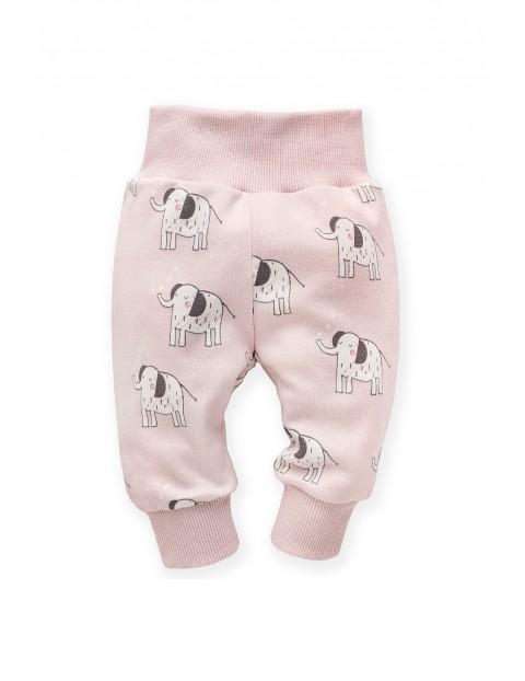 Spodnie dresowe różowe w słoniki Wild Animals- szeroki pas