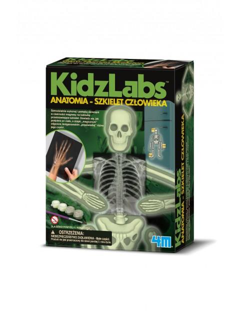 Zrób to sam - 4M Anatomia - Szkielet człowieka wiek 8+