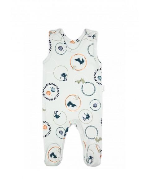Śpiochy bawełniane dla niemowlaka Fox Club