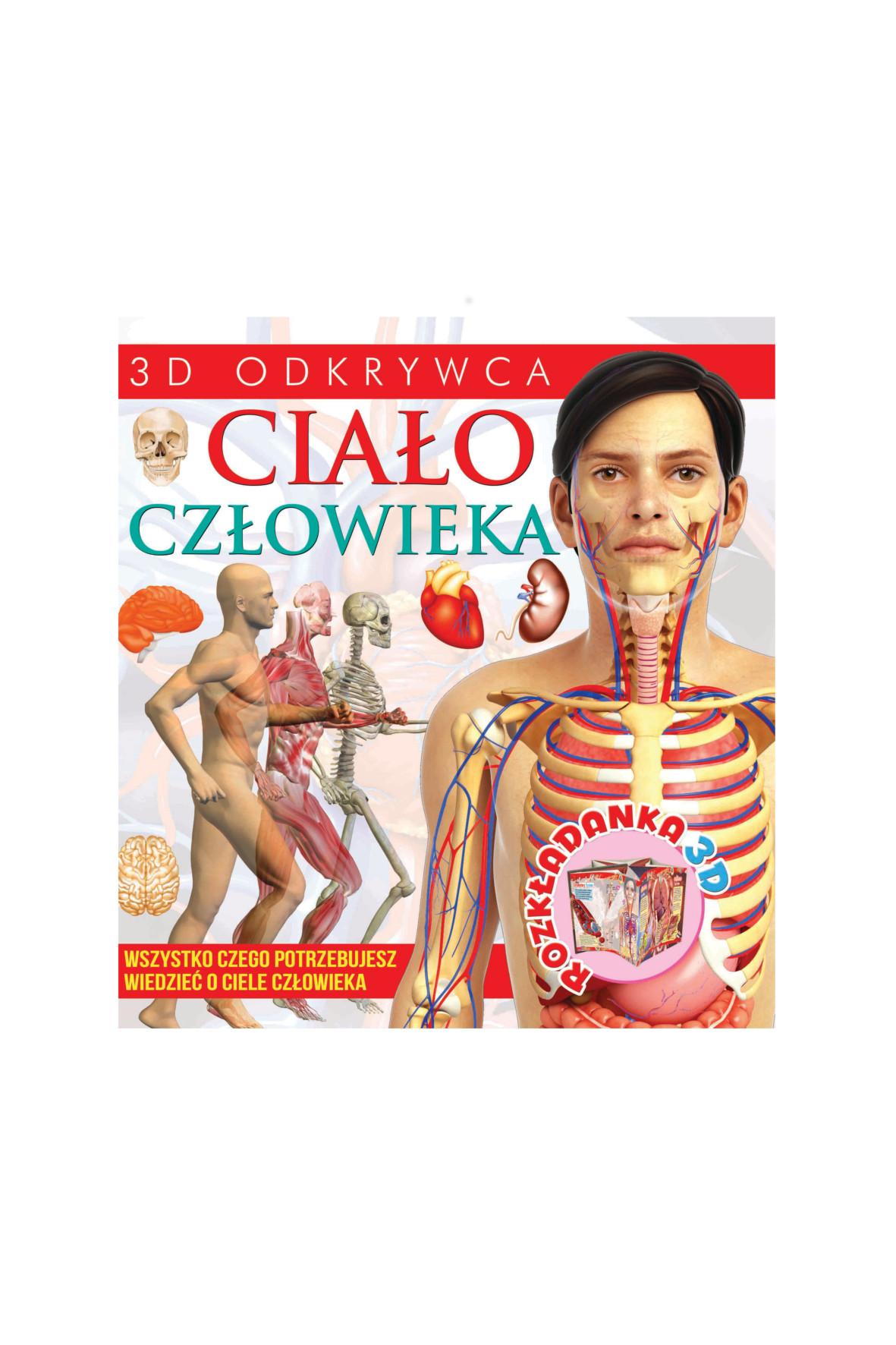 3D Ciało Człowieka 1Y36C1