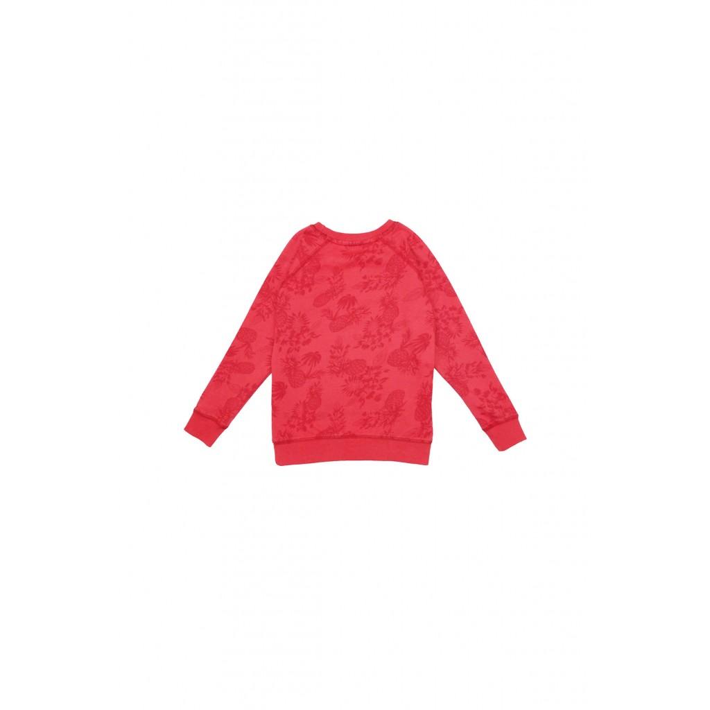 Bluza dresowa chłopięca 2F31A1